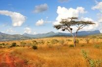 navigateur-safari