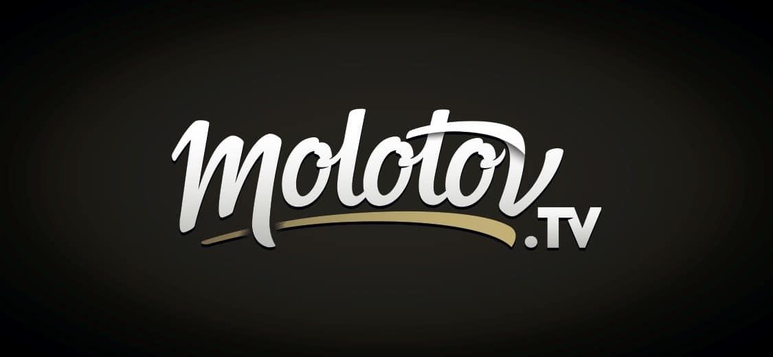 molotov netflix