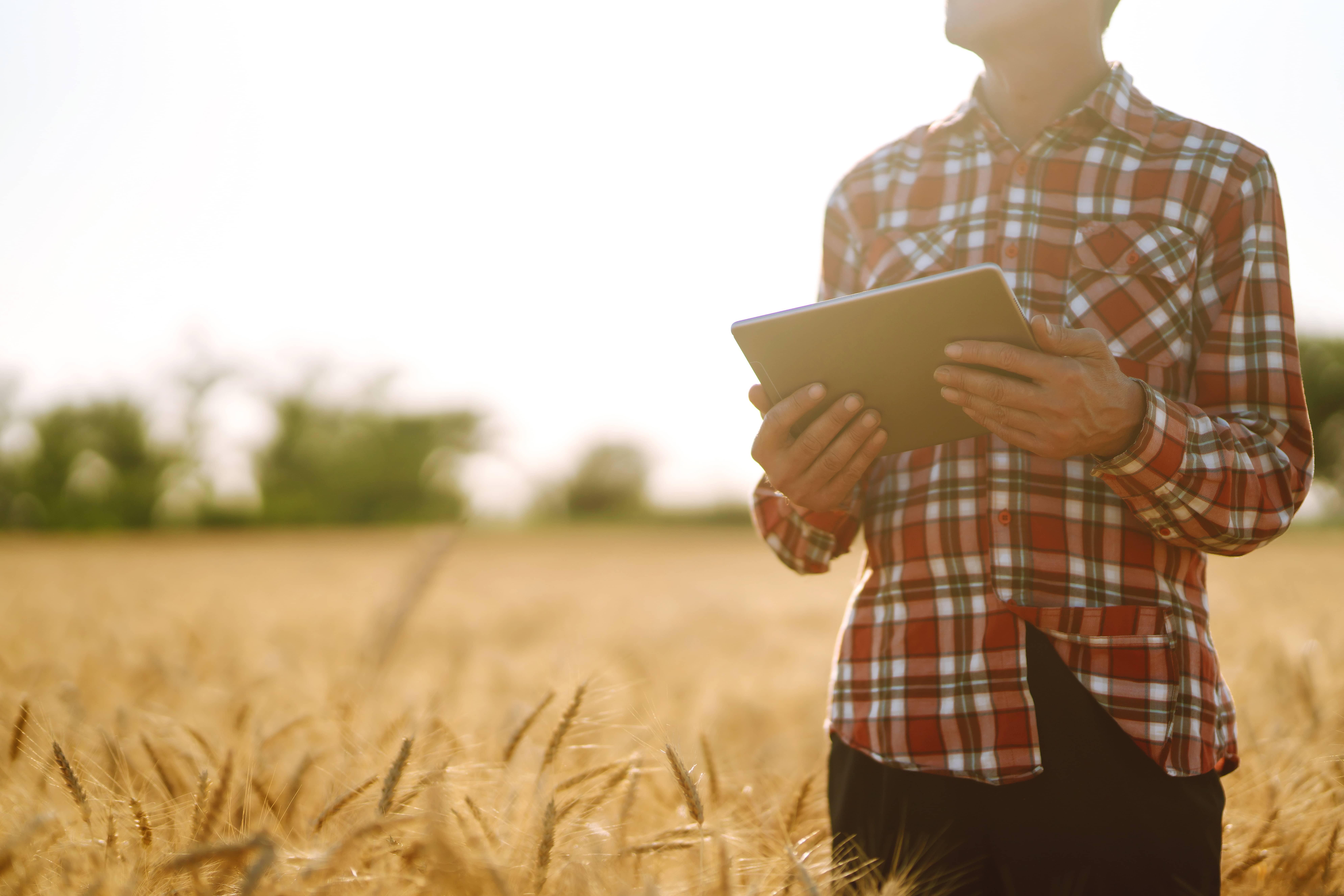 internet agriculteur